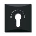 Накладка для выключателя с замком (IP44) Allwetter 44 антрацит